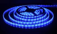 Светодиодная лента 300 smd светодиодов 12V. Тип 3528. Цвет синий H203B, 5м