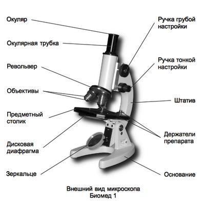 было револьвер в микроскопе определение специалистах ничего